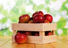Basket with the apples Royalty Free Stock Images