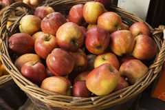 Basket of apples. At farmers market Royalty Free Stock Image