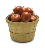 Basket of Apples. Basket Full of Red Apples on White Background Royalty Free Stock Photography