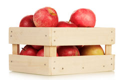 Basket with the apples Royalty Free Stock Photos