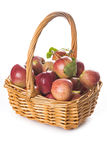 Basket with apples isolated on a white background royalty free stock photo