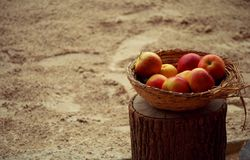 Basket of apples. Little basket of sweet, red- yellow apples, laid on stump. With sand background royalty free stock photography