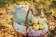 Basket with apples,owl toy and baby's bootees Stock Photo