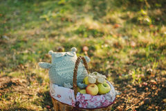 Basket with apples,owl toy and baby's bootees Royalty Free Stock Photography