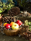 Basket of Apples on Steps Stock Image