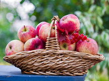 Basket with apples on the table Stock Photo
