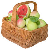 Basket with apples and a water-melon. Royalty Free Stock Photos