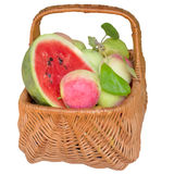 Basket with apples and a water-melon. Royalty Free Stock Photography