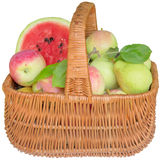 Basket with apples and a water-melon. Royalty Free Stock Photo