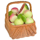 Basket with apples and a water-melon. Stock Photography