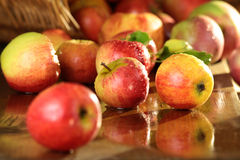 Basket of apples on a wet table Stock Photography