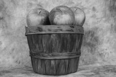 Basket of apples. A  wooden  basket with apples done in black and white Royalty Free Stock Photography