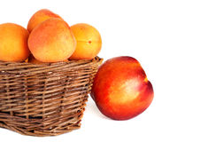 Basket apricot and nectarine isolated on a white. Basket of fresh apricot and nectarine isolated on a white Stock Images