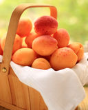Basket with apricots. On window sill - selective focus in the centre royalty free stock images