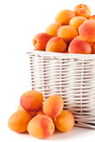 Basket of Apricots Royalty Free Stock Photography