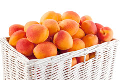 Basket of apricots Stock Photography