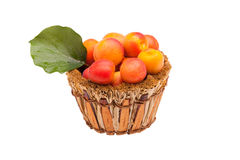 Basket With Apricots Isolated Royalty Free Stock Images