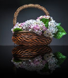 Basket of artificial flowers against dark background Stock Photography