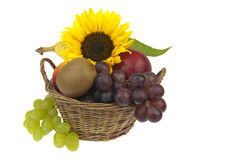Basket assorted fruit and sunflower Royalty Free Stock Photo