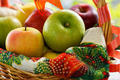 Basket of Assorted Fruits. Basket of assorted apples for Christmas. Fresh, crisp and tangy green apples; crunchy and sweet red apples, and crisp and sweet yellow stock photography