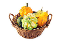 Basket with autumn decoration mini pumpkins on white isolated ba Stock Photos