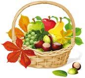 Basket with autumn fruit stock illustration