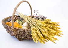 Basket with autumn fruit. Wicker basket with autumn fruit and vegetables, isolated Royalty Free Stock Photos