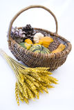 Basket with autumn fruit Royalty Free Stock Photos