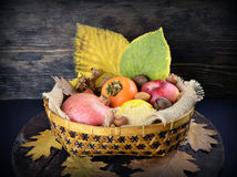 Basket with autumn fruits Royalty Free Stock Photo