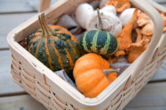 Basket of autumn goodies Royalty Free Stock Photos
