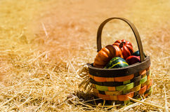 Basket with Autumn harvest vegetables background Royalty Free Stock Images