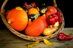 Basket with autumn vegetables,pumpkin,paprika,aubergine,tomato Royalty Free Stock Photography