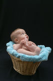 Basket Baby. Image of baby sitting in a basket, playing with his feet stock image
