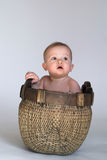 Basket Baby Royalty Free Stock Image