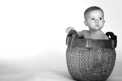 Basket Baby. Black and white image of cute baby sitting in a woven basket royalty free stock photos