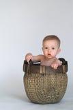 Basket Baby Stock Photography