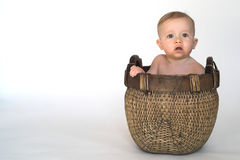Basket Baby Royalty Free Stock Images