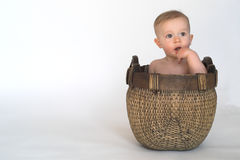 Basket Baby. Image of cute baby sitting in a woven basket royalty free stock images