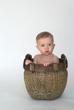 Basket Baby. Image of cute baby sitting in a woven basket stock photography