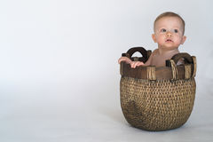 Basket Baby Stock Photo