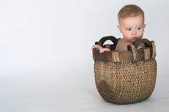 Basket Baby. Image of cute baby sitting in a woven basket royalty free stock photos