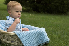 Basket Baby. Image of beautiful toddler sitting in a basket in the grass, holding a flower Royalty Free Stock Image