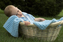 Basket Baby. Image of beautiful toddler sitting in a basket in the grass Stock Photos
