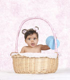 Basket baby Royalty Free Stock Photography