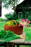 Basket on the background of the house. Basket with crop on the background of the house Stock Images