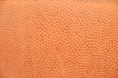 Basket-ball #5 Images stock