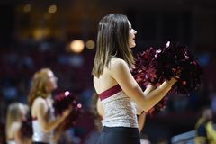 2014 basket-ball de NCAA - acclamation/danse Images libres de droits