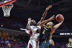 2014 basket-ball de NCAA - action de jeu de temple de Towson @ Photographie stock