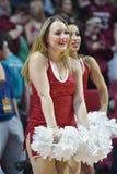 2014 basket-ball de NCAA - action de jeu de temple de Towson @ Photos libres de droits