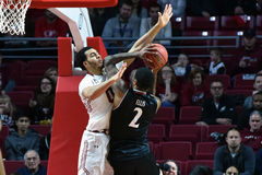 2016 basket-ball de NCAA - Cincinnati au temple Image stock